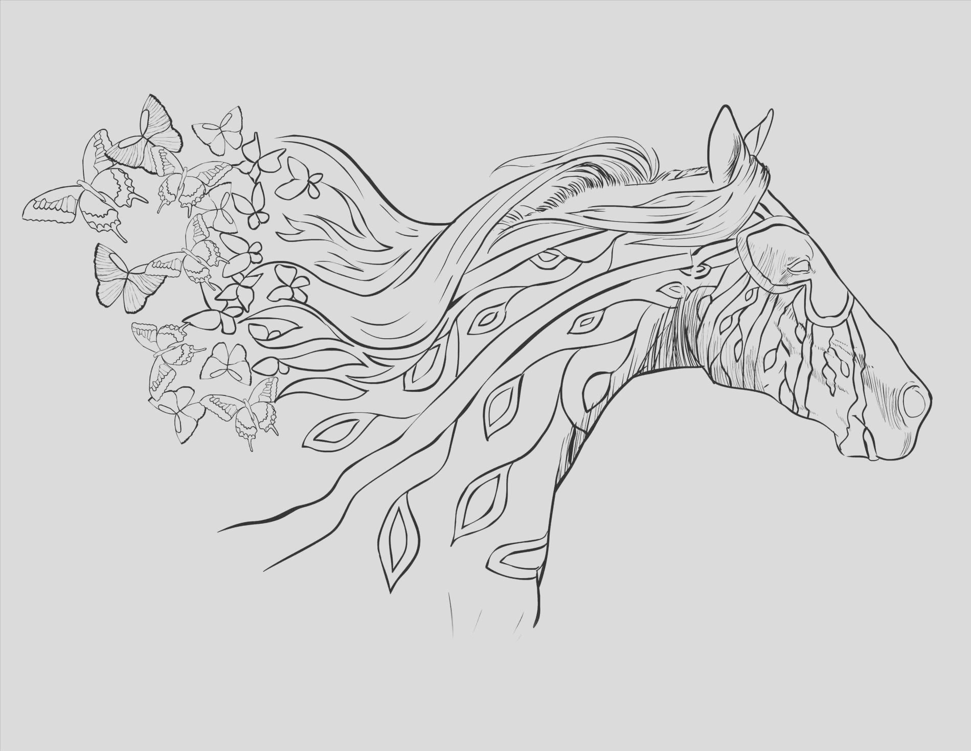 coloring pages for adults horses