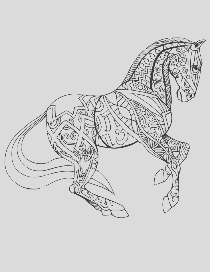 coloring pages horse adult coloring