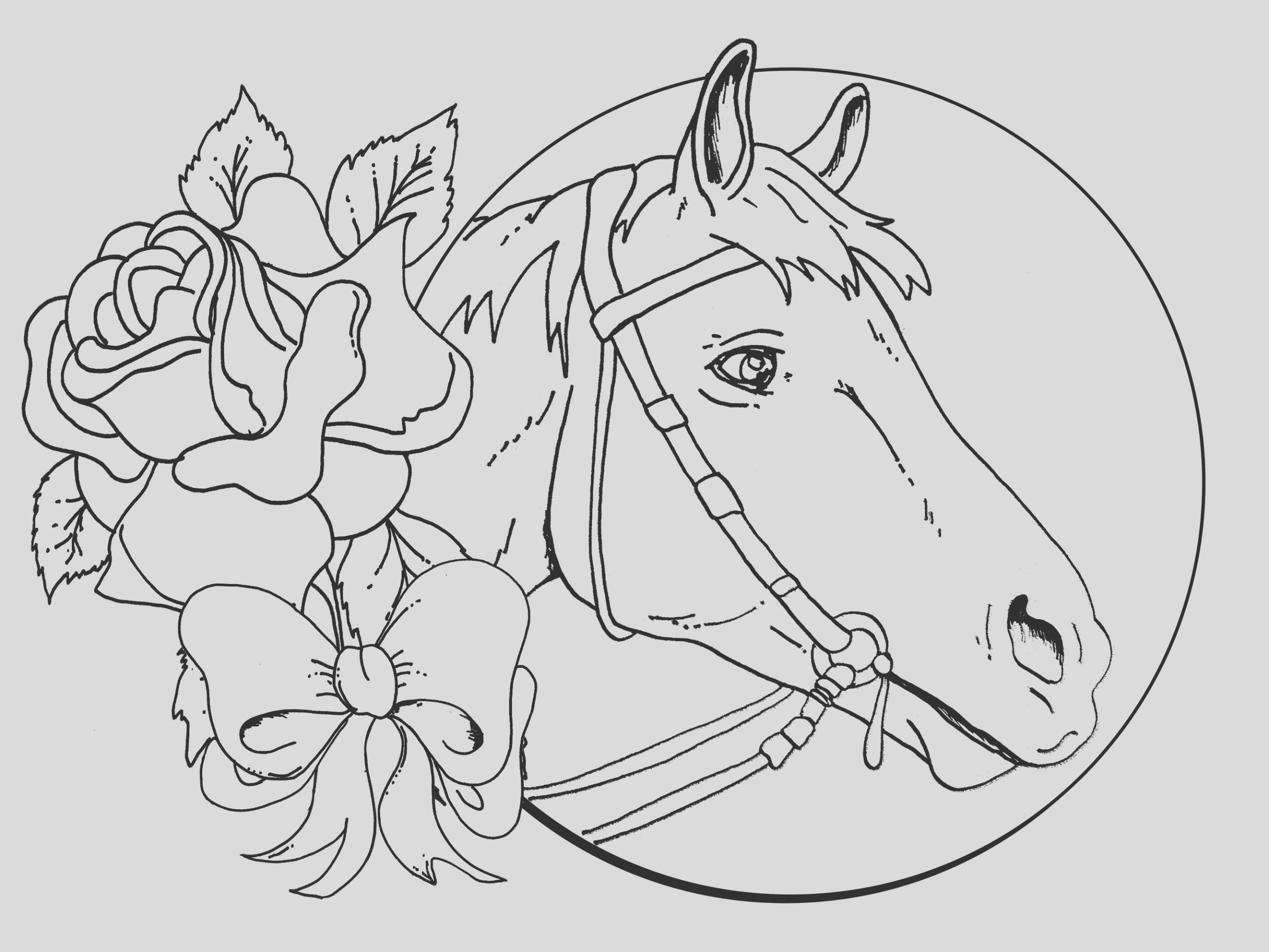 horses coloring pages free coloring pages horse colouring pages for adults realistic horse coloring pages for adults