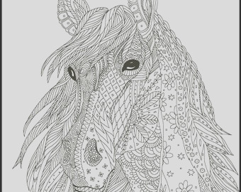 horse coloring page for adults adult