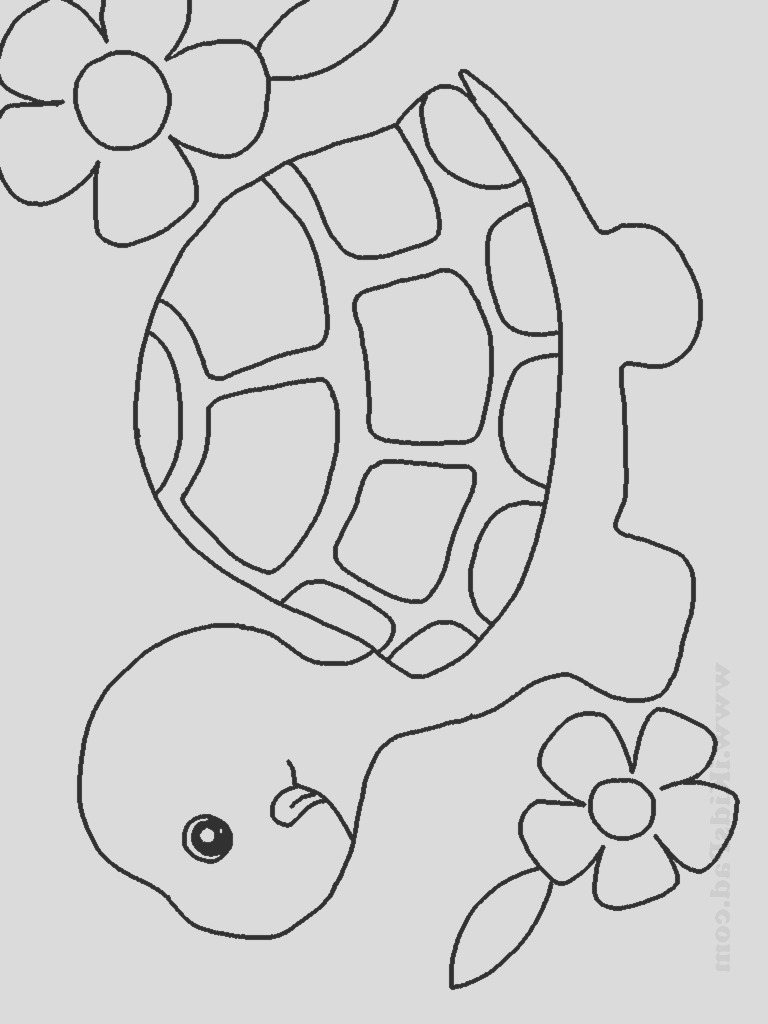 cute baby animal coloring pages to print