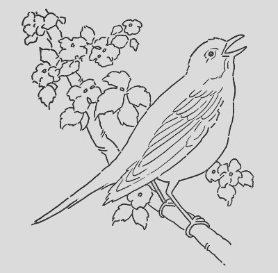 line art coloring page bird with blossoms