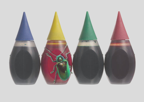 what bugs you about food coloring