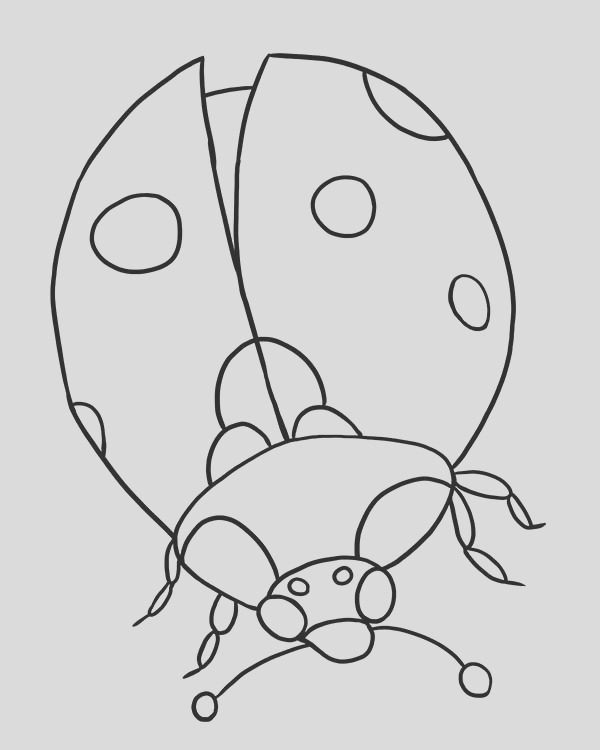 lady bug looking for food coloring page 2