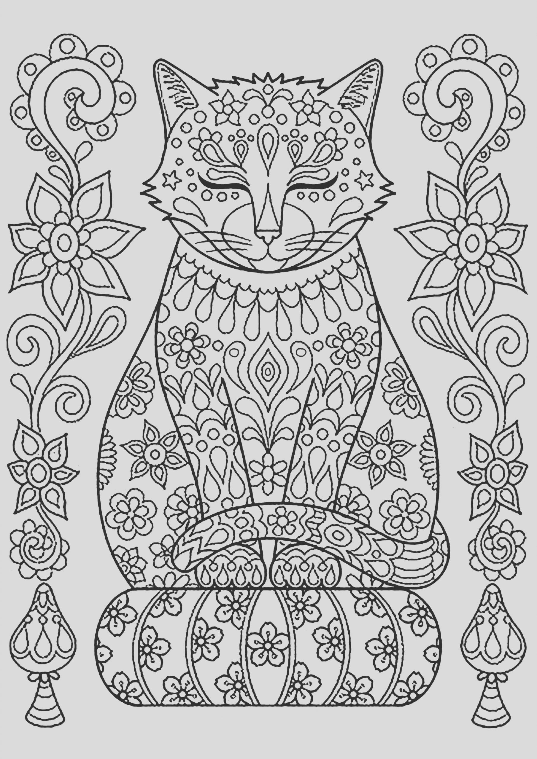 image=cats coloring cute cat on pillow with flowers 1
