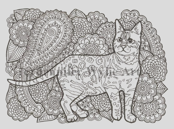 bengal cat cat adult coloring page