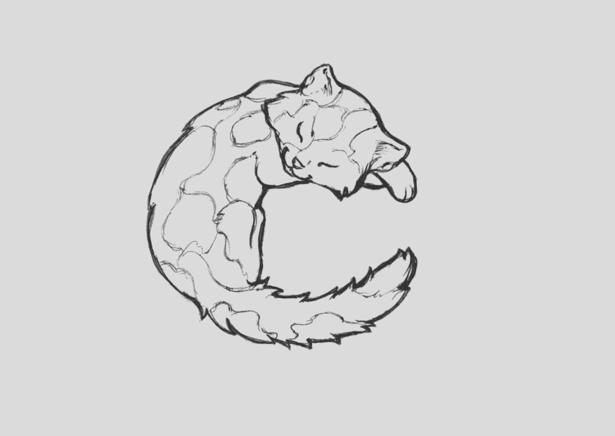 coloring page c cat i