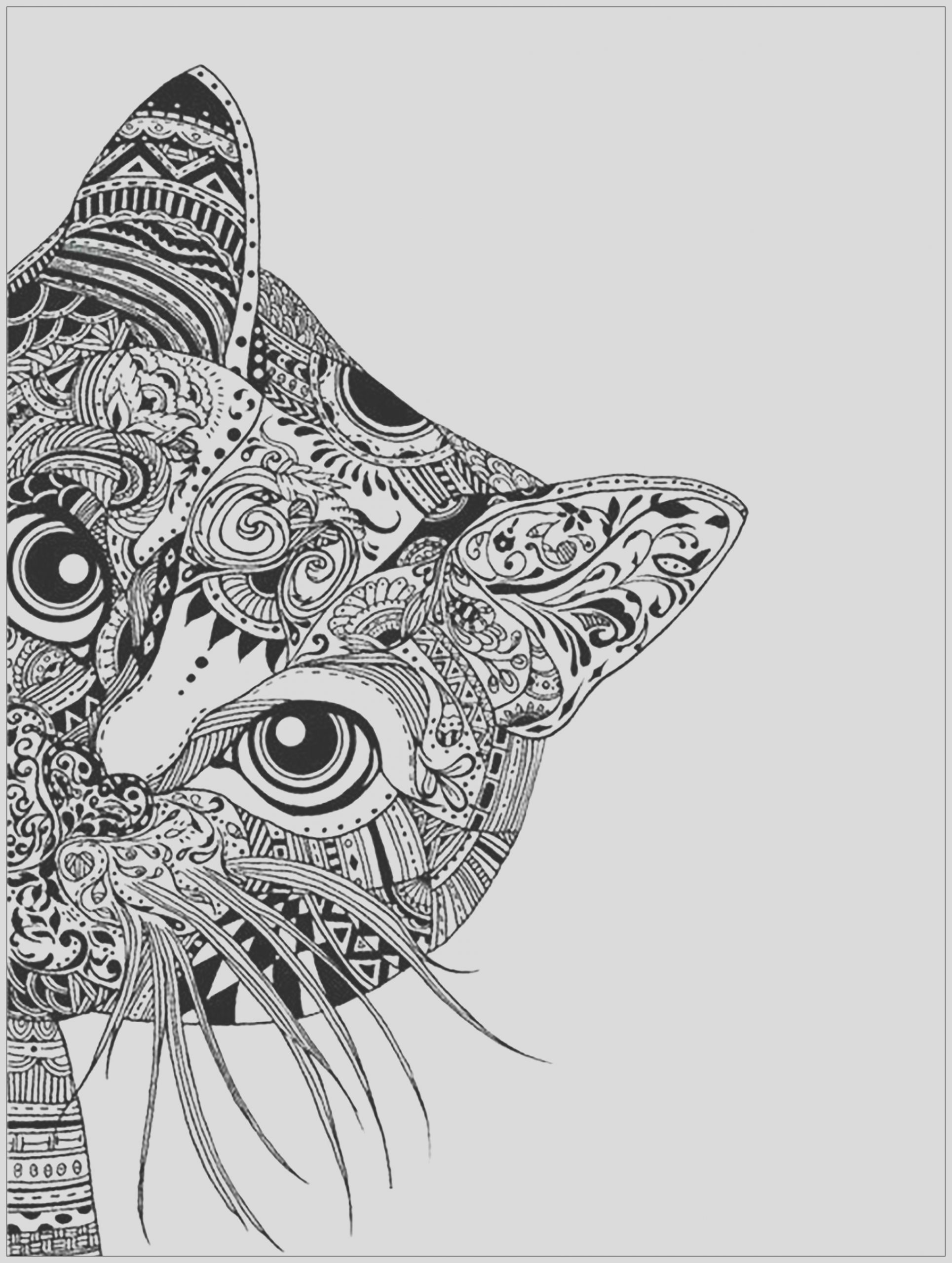 image=cats coloring pages adults cat head 1