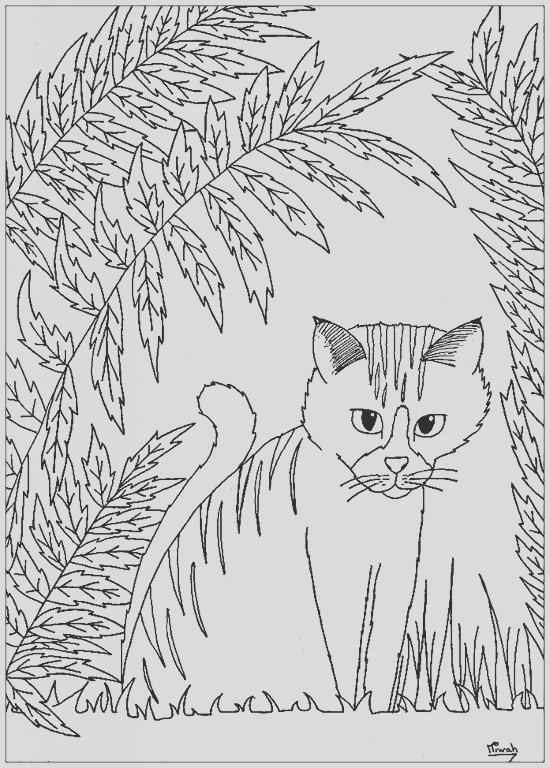 image=cats coloring pages for children cats 1