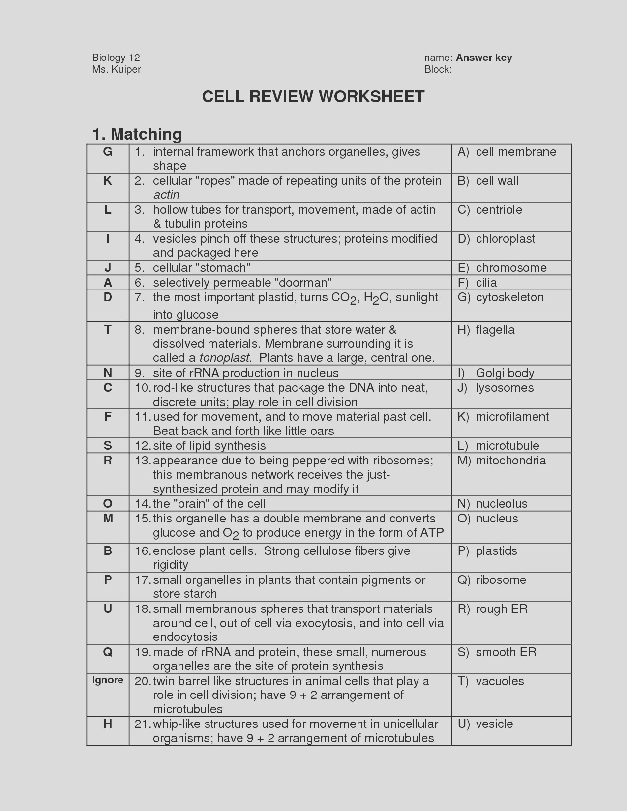 post cell membrane coloring worksheet answers
