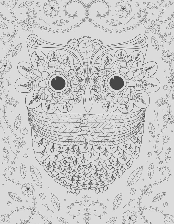 Big Eyed Owl Adult Coloring Page Leisure Arts eBook