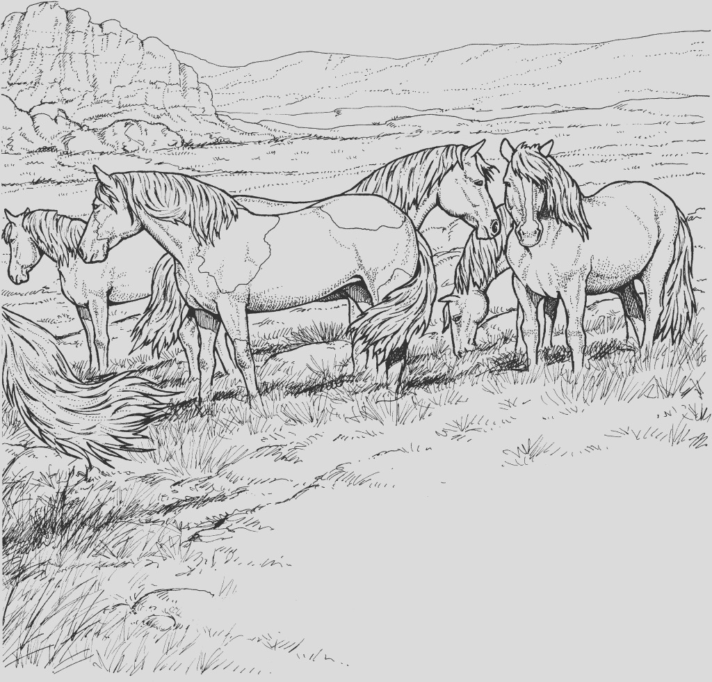 horses coloring pages pictures