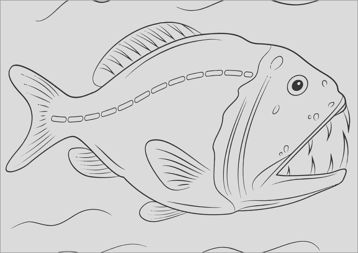piranha fish coloring page for adult