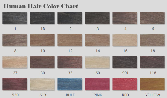 human hair color chart i1