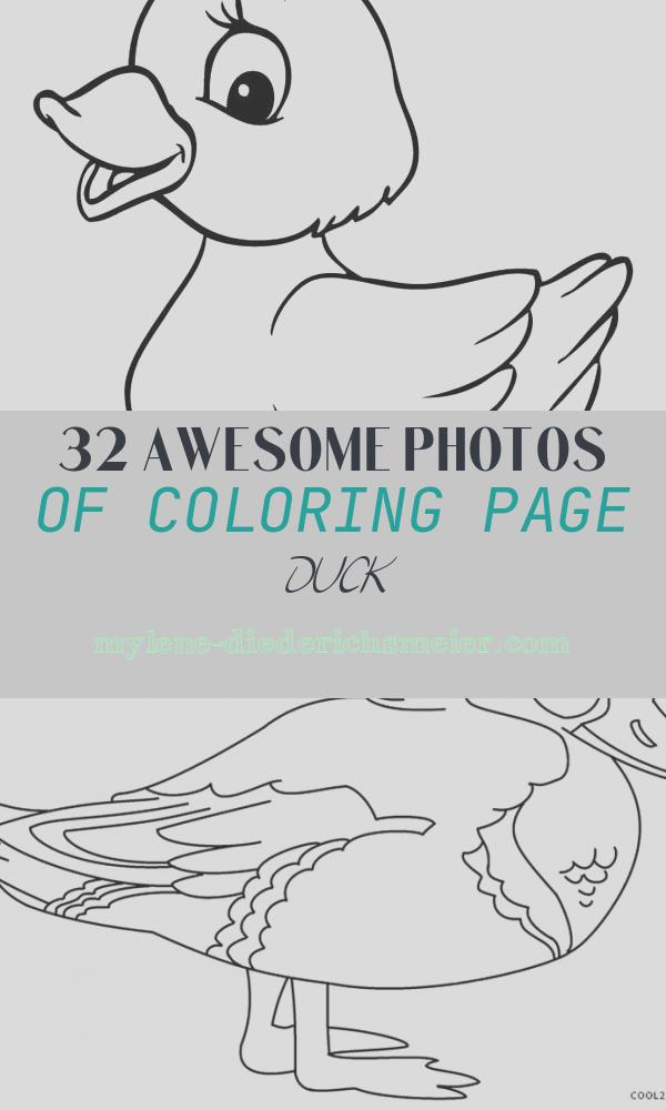 Coloring Page Duck Inspirational Baby Duck Coloring Pages