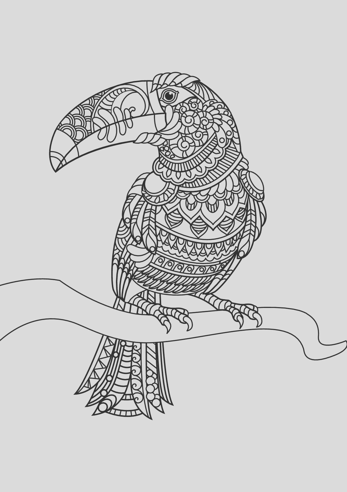 image=birds Coloring for kids birds 842 1