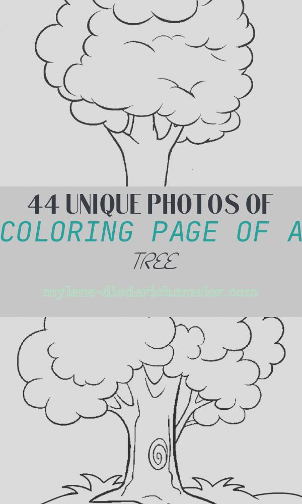 Coloring Page Of A Tree New Free Printable Tree Coloring Pages for Kids