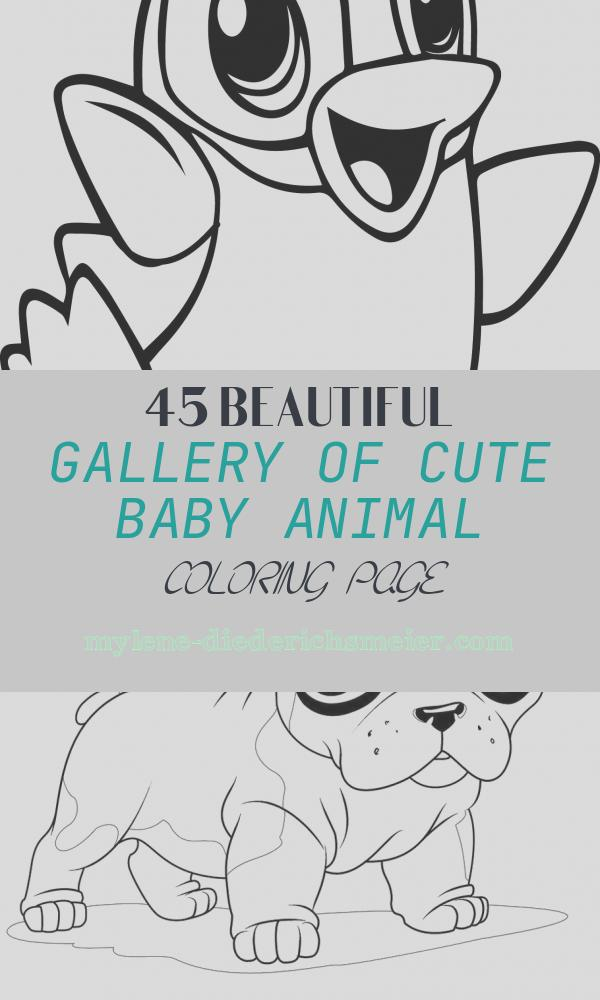 Cute Baby Animal Coloring Page Unique Cute Animal Coloring Pages Best Coloring Pages for Kids