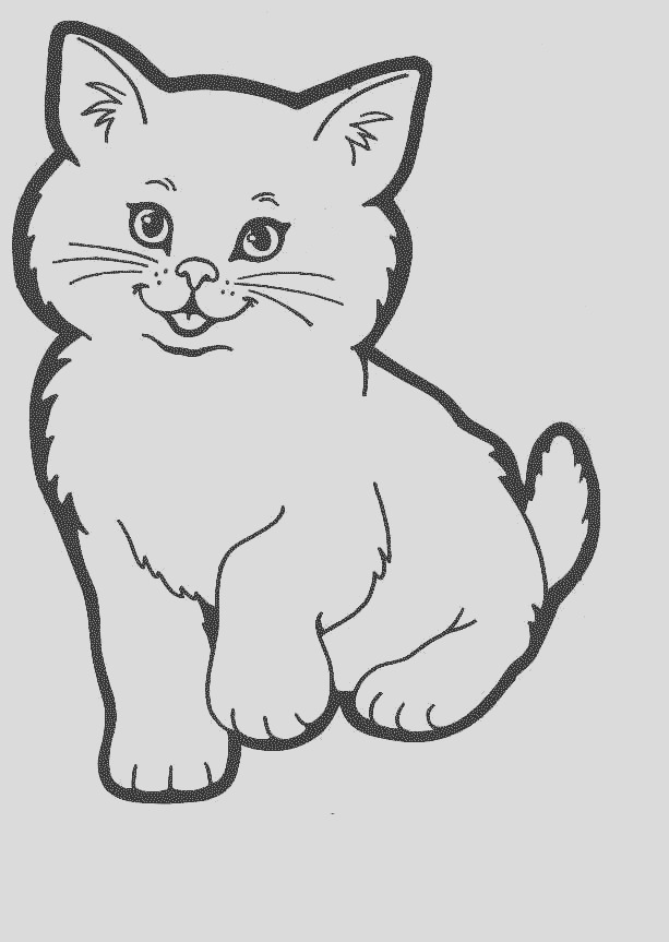 cute baby cats coloring pages animal