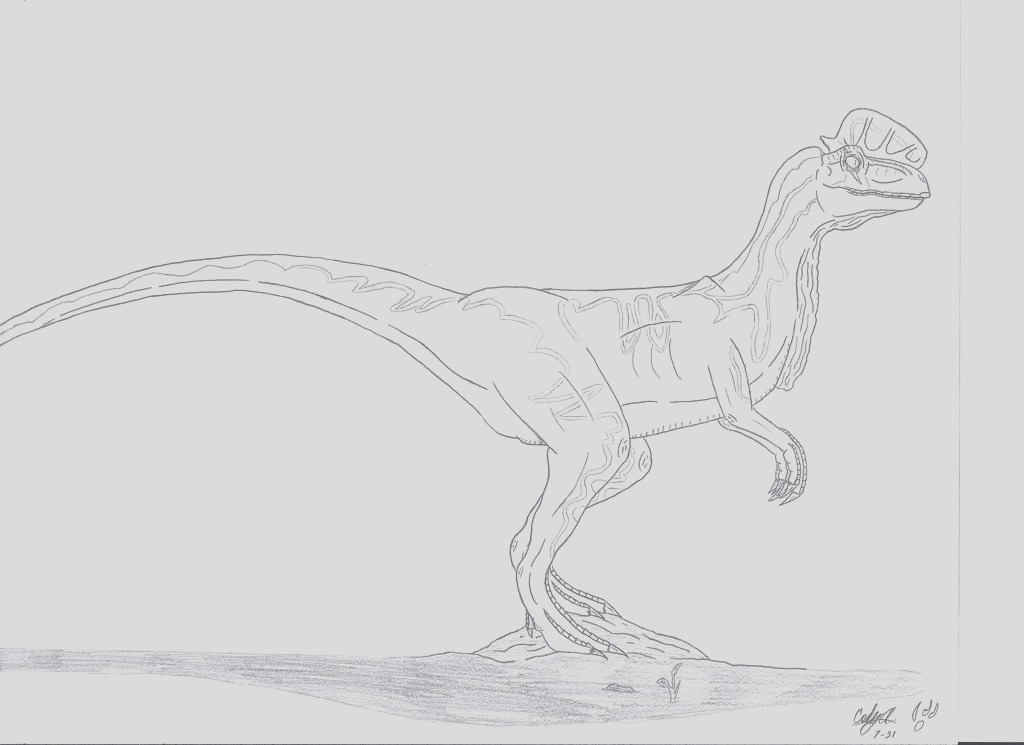 JP Dilophosaurus Veneifer No Color