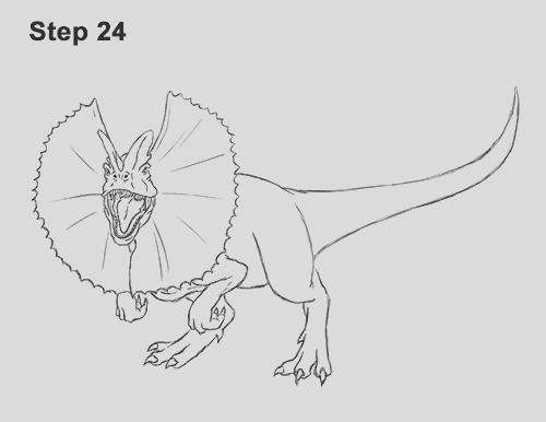 225 draw dilophosaurus start=4