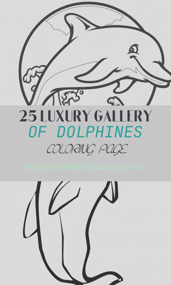 Dolphines Coloring Page Awesome Print & Download My Experience Of Making Dolphin