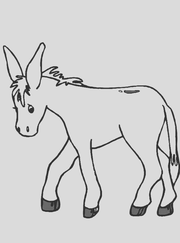 donkeys coloring pages