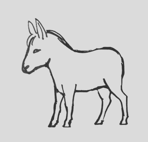 realistic and funny donkey coloring pages