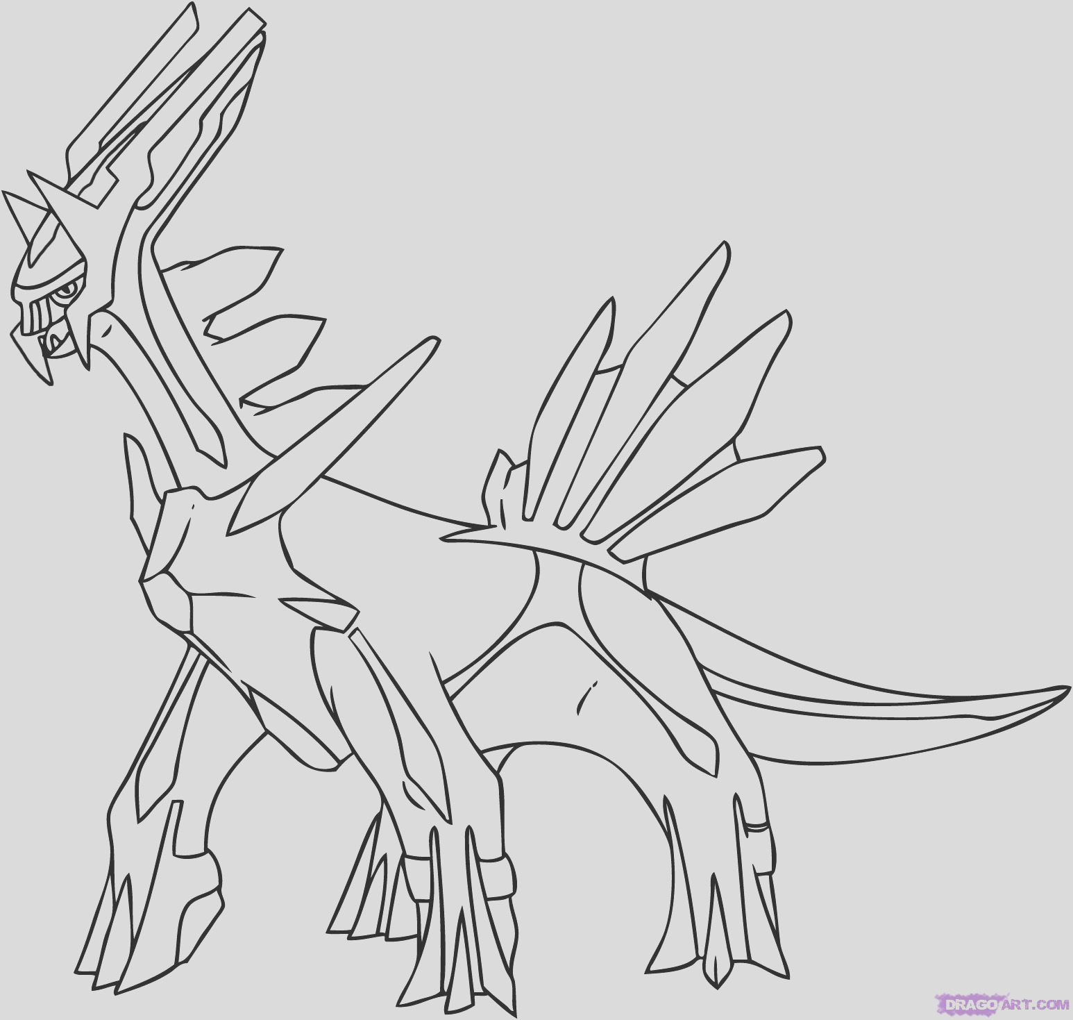 dragoart coloring pages