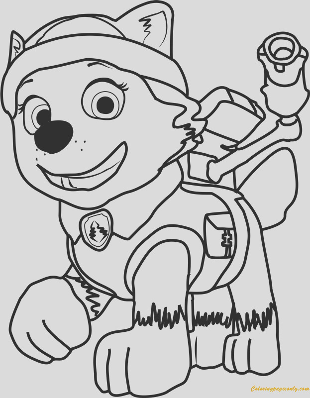 everest from paw patrol