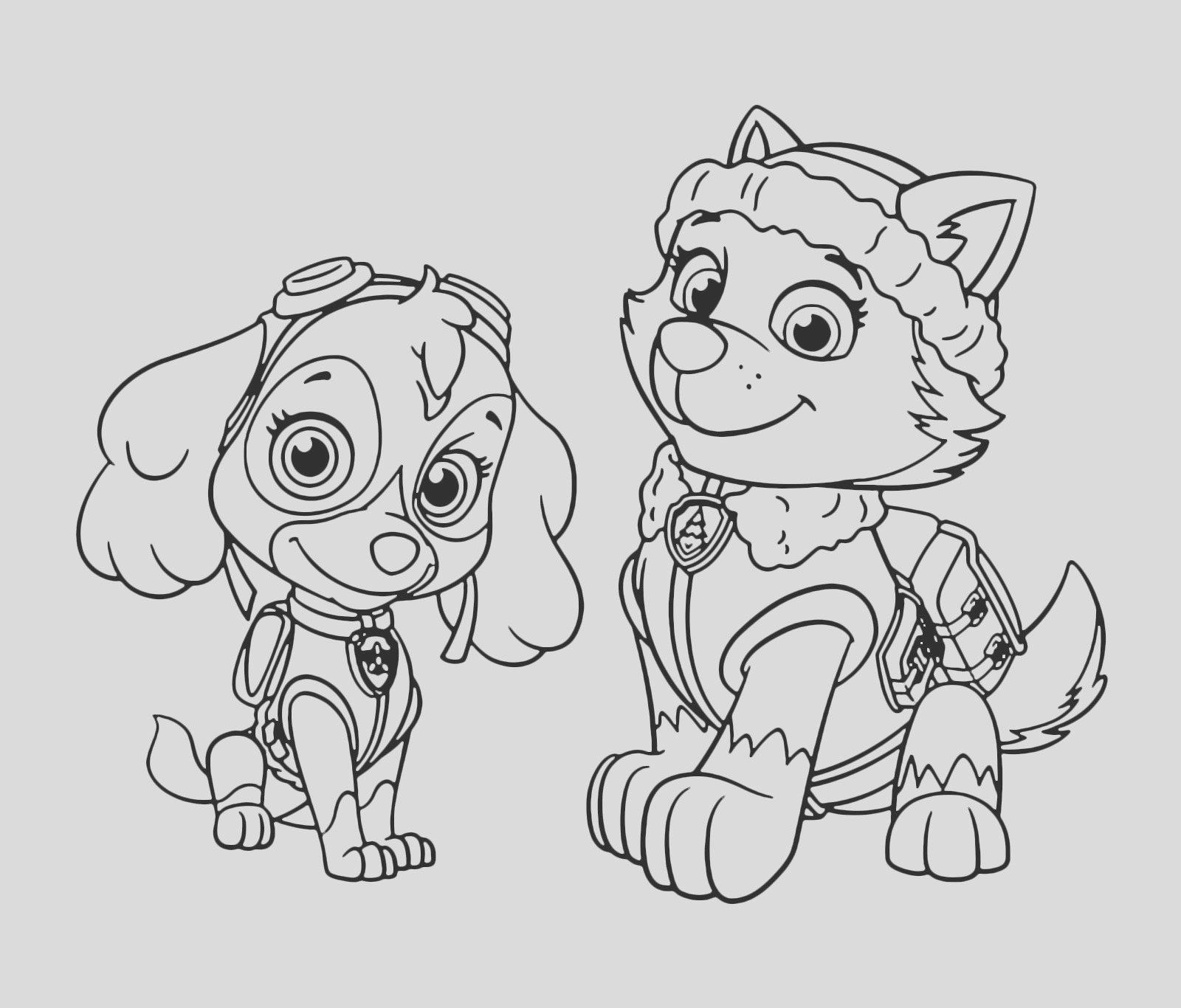 paw patrol skye and everest coloring pages
