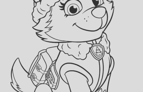 paw patrol coloring pages everest