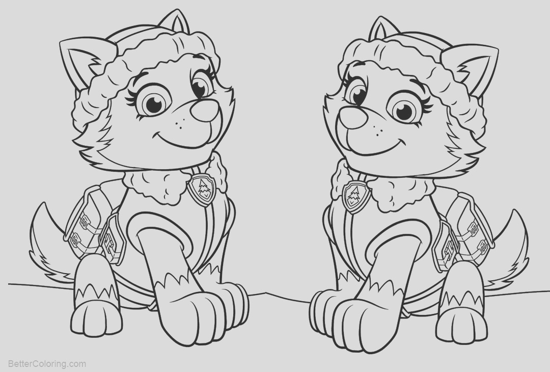paw pups colouring page