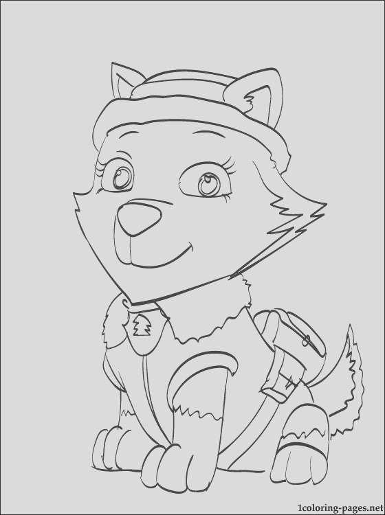 everest paw patrol coloring page