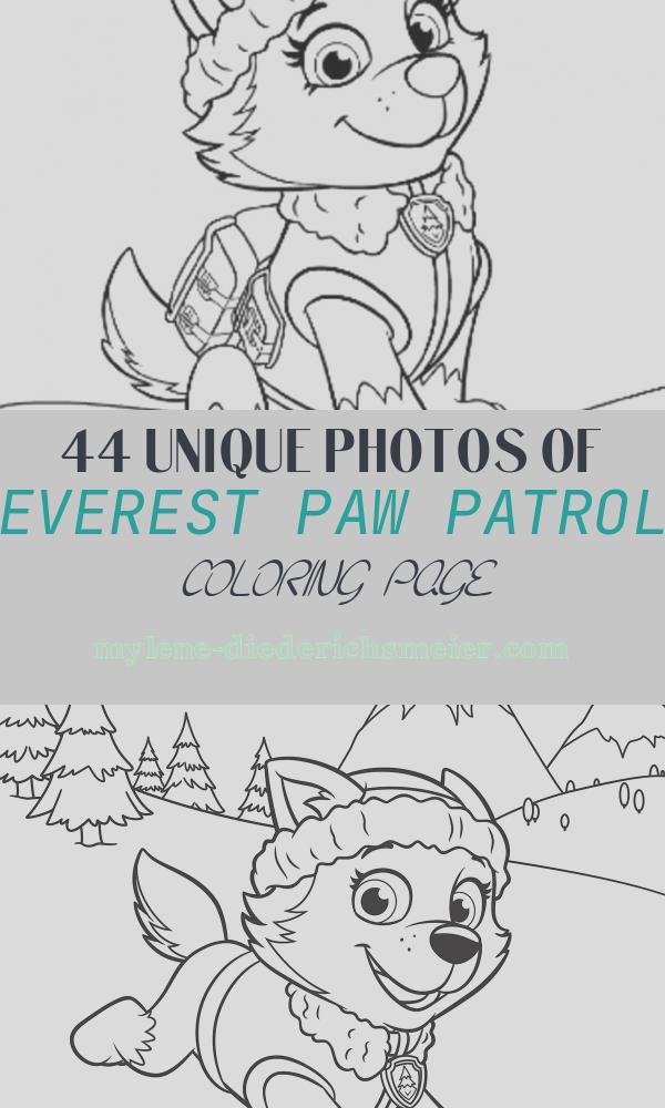 Everest Paw Patrol Coloring Page Unique Paw Patrol Paw Patrol Meet Everest Colouring Pack
