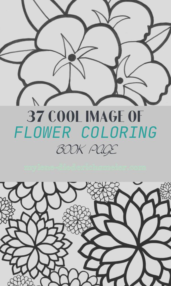Flower Coloring Book Page Fresh Free Printable Flower Coloring Pages for Kids Best