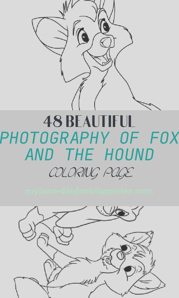 Fox and the Hound Coloring Page New Fox and the Hound Coloring Pages Free Printable Fox and