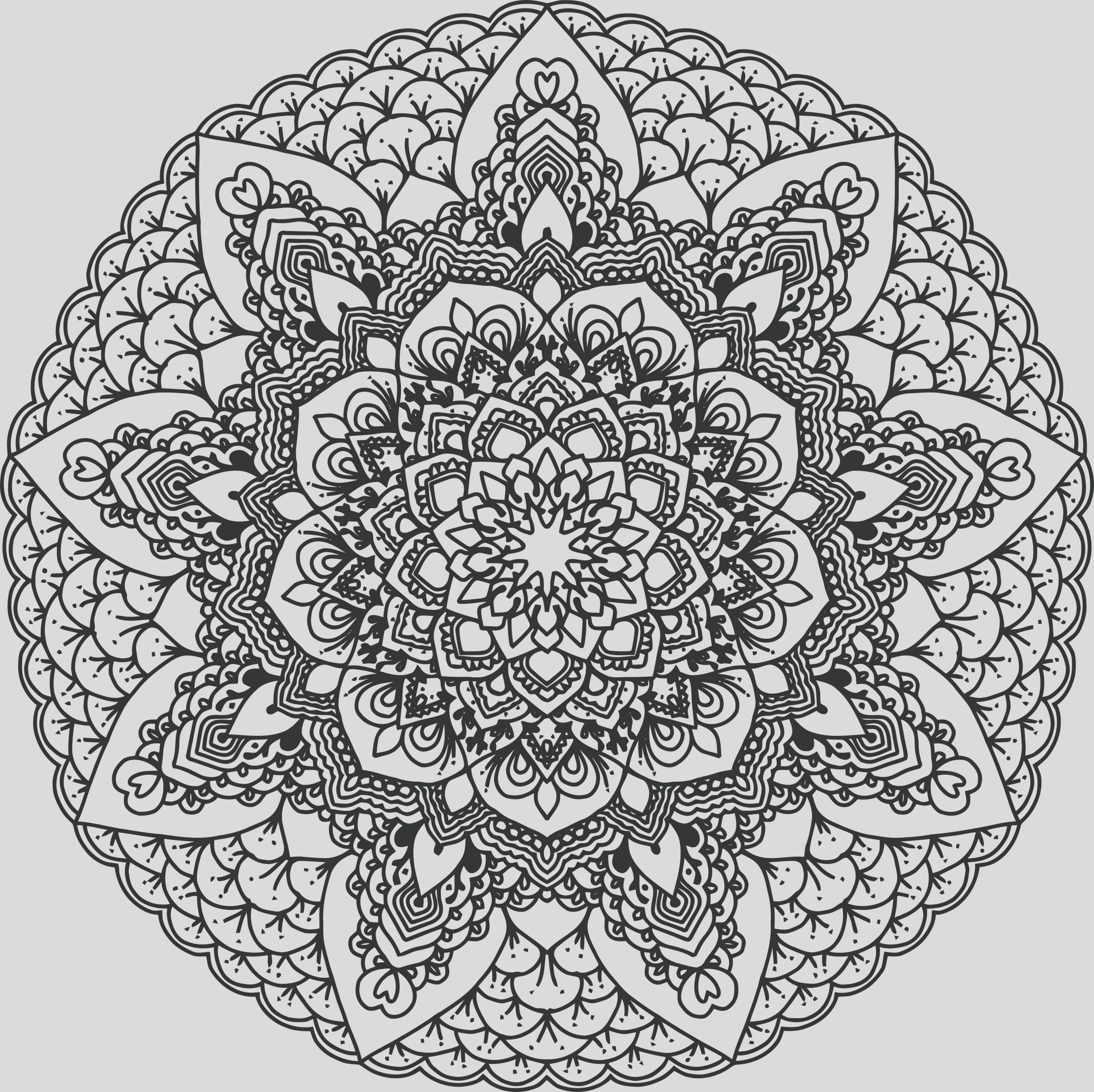242 Free Clipart A Black And White Adult Coloring Page Floral Mandala