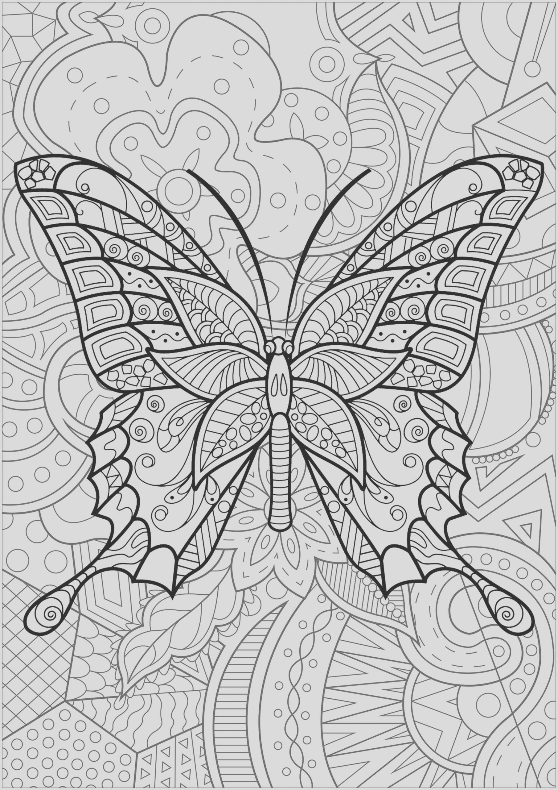 image=insectes coloring butterfly with pattern in background 3 1