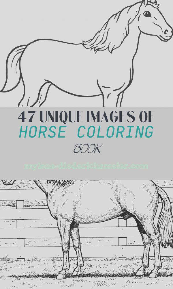 Horse Coloring Book Inspirational Printable Horse Coloring Page for Kids – Supplyme
