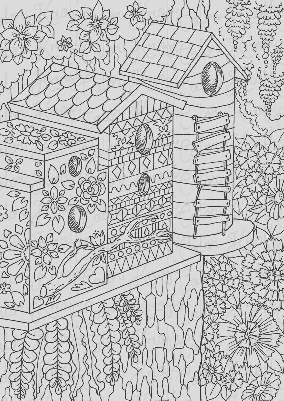 bird houses in the country coloring page