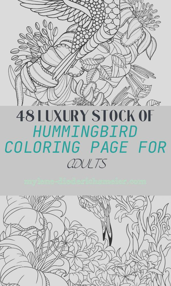 Hummingbird Coloring Page for Adults Awesome Hummingbird Printable Coloring Pages Digital Of