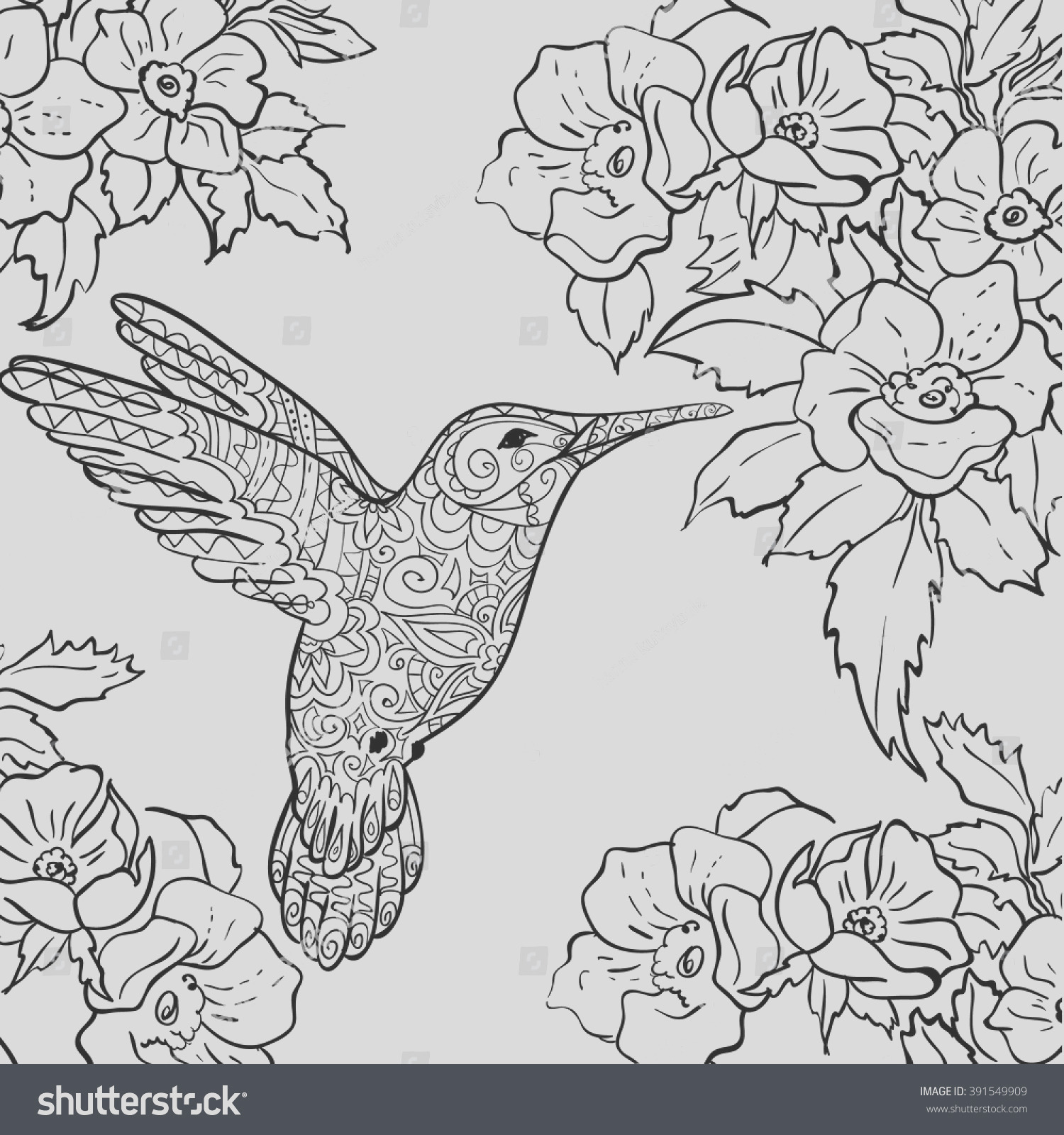 stock vector sketch hummingbird flying around flowers full of nectar sketch for adult antistress coloring page