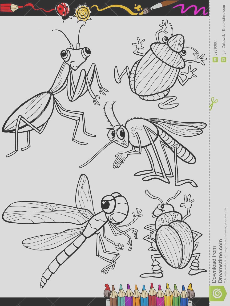 royalty free stock photography cartoon insects set coloring book page illustration black white bugs children image