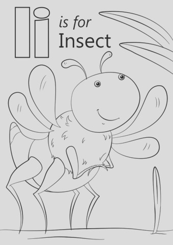 letter i is for insect