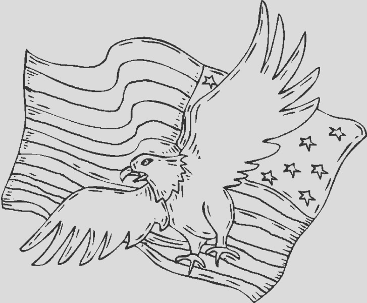 coloring pages of patriots
