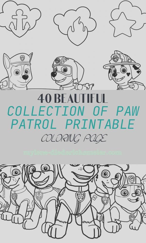 Paw Patrol Printable Coloring Page Luxury Free Paw Patrol Coloring Pages Happiness is Homemade