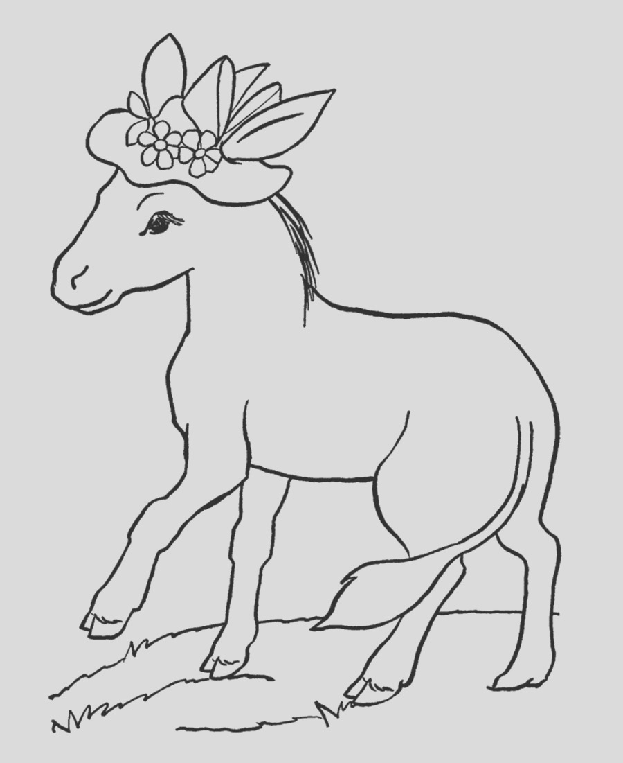 donkey coloring pages