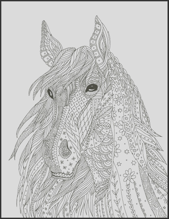 5 horse coloring pages coloring pages