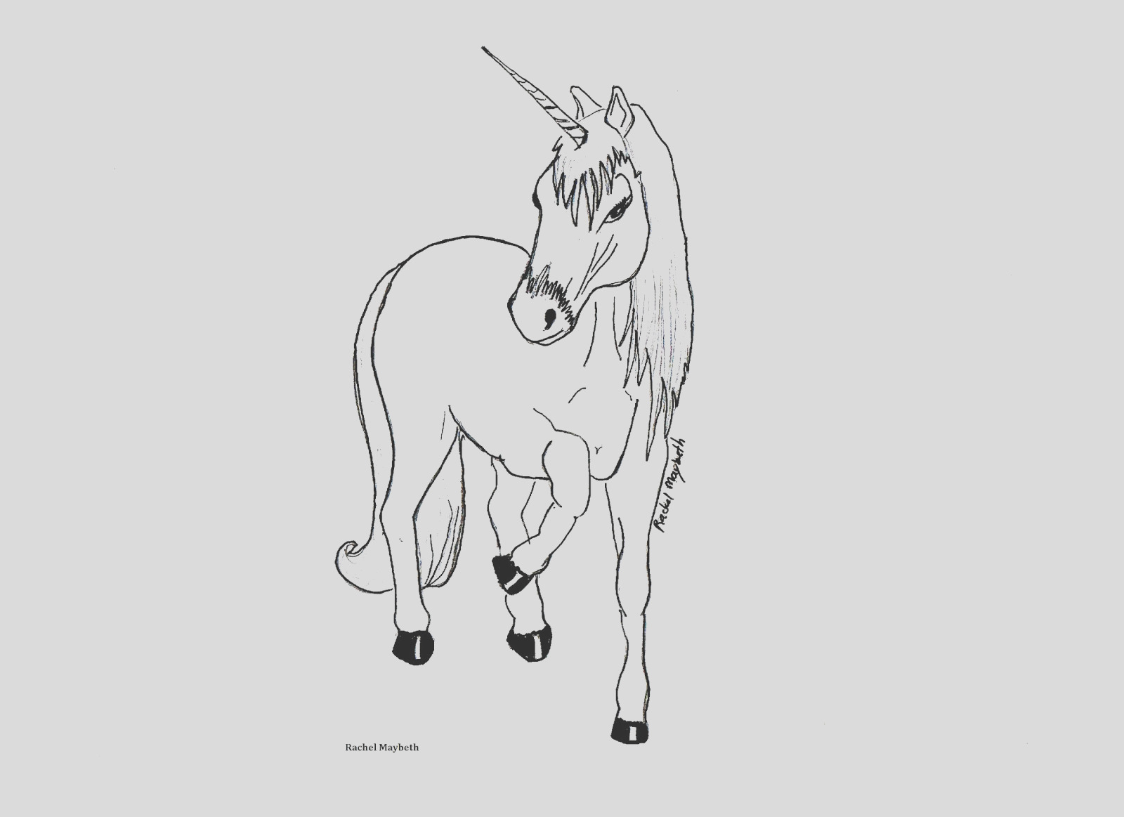 free horse unicorn and pegasus coloring